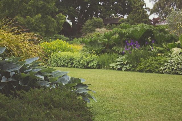 Aranżacja ogrodu przydomowego